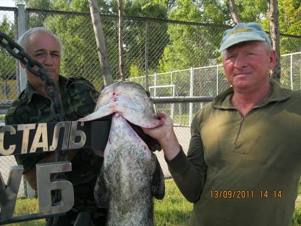 все о рыбалке на днепре в запорожье