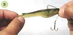 братья щербаковы ловля на поролоновую рыбку